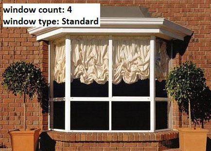 Standard Window